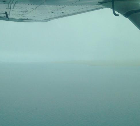More fog.