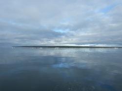 More sea ice