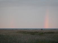 Watching the rainbow skies (from cotton seas)