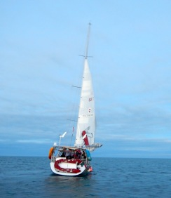 The Top-to-top ship called Pachamama