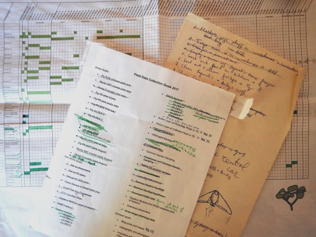 Our trusty field plans and to do lists that became more and more crossed off and filled in as the summer progressed.