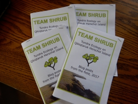 The first four copies of a Team Shrub booklet - printed on the island at the Signal's House Publishing Company, stapled together by hand.