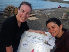 """Sharing the Team Shrub """"analog"""" blog with the community meant carrying the wooden board between the different houses in Pauline Cove and advertising directly to other folks on the island - a much more social approach to social media!"""