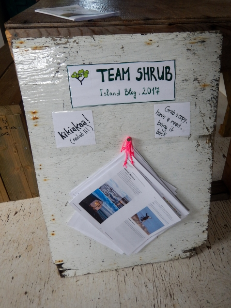 """The island """"analog"""" blog! Team Shrub put together a bulletin board with hard copies of our blog posts for everyone on the island to read this summer."""