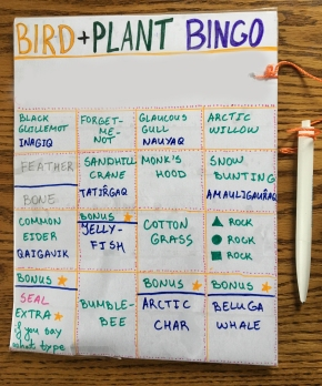 Bird and plant (and more) bingo - a fun way to learn about the island's wildlife!