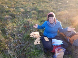 Collecting biomass samples