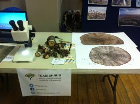 Shrub rings - Arctic time machines!