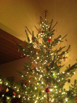 The Christmas tree at my house.
