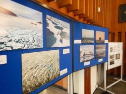 The Team Shrub Arctic Above Exhibition