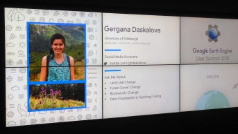 The on-screen bios were great for putting faces to names and learning about the diversity of ways in which people are using the Earth Engine!