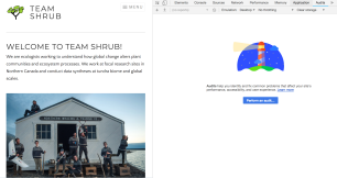 Auditing the Team Shrub website performance and user experience!