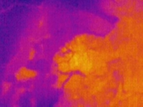 A thermal image of Slump D.