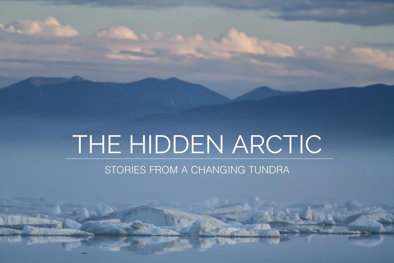 Hidden_Arctic_OE
